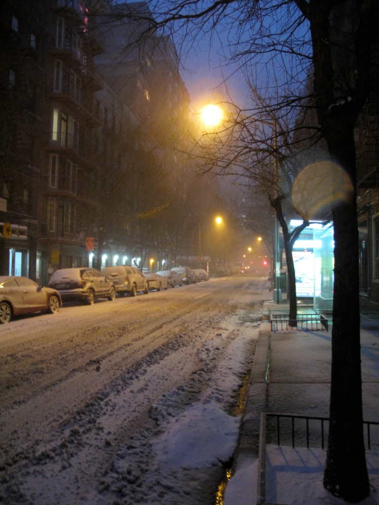 Blizzard NYC December 2010