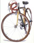 custom bike portrait by Taliah Lempert